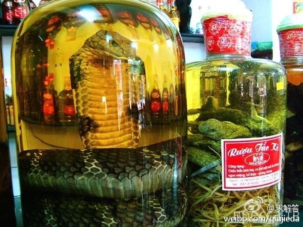 Гремучая змея, замаринованная в китайском вине, укусила женщину (4 фото)