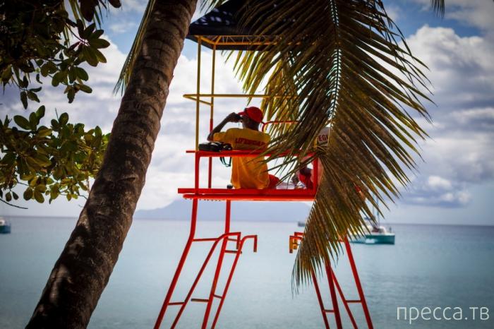 Сейшелы, остров Маэ. Регата (10 фото)