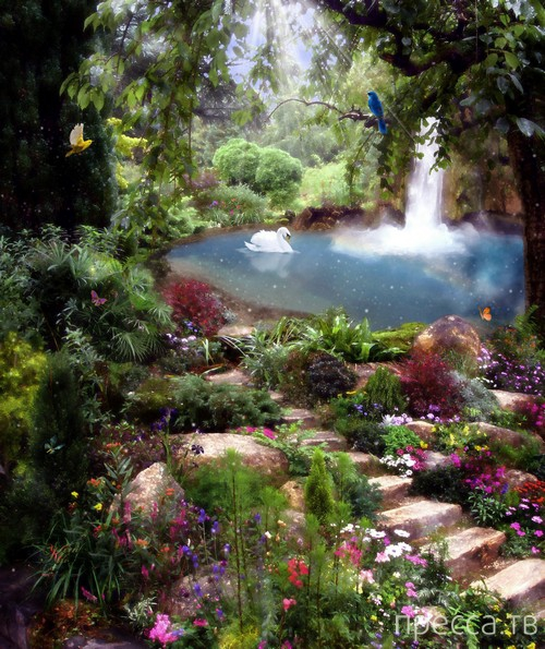 Как выглядит рай... (25 фото)