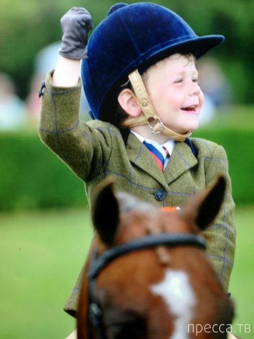 3-летний наездник Гарри Эдвардс-Брэди - звезда турнира «Лошадь года» (2 фото)