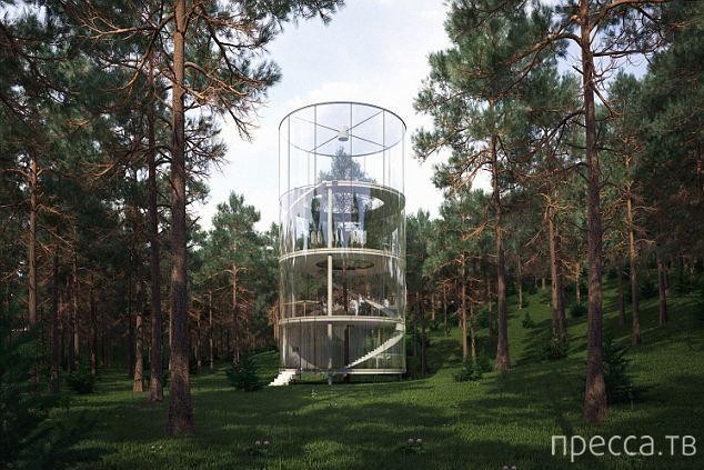 Необычный стеклянный дом посреди горного леса в Казахстане (5 фото)