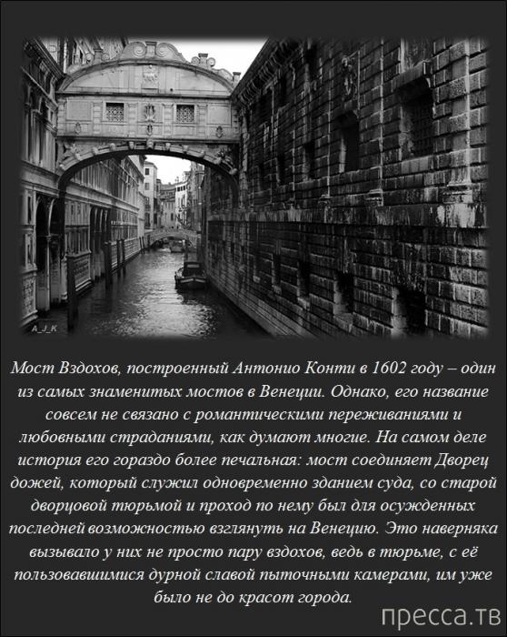 Интересные факты обо всем на свете, часть 3 (20 фото)