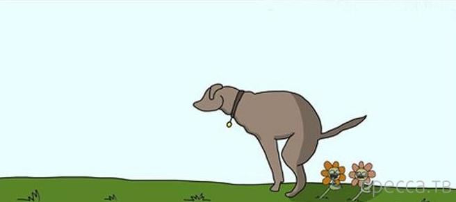 Смешной комикс про трагическую историю любви (7 фото)