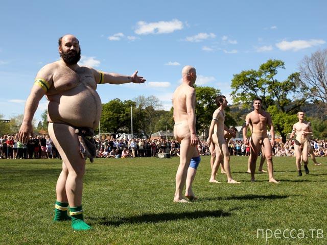 Голое регби в Новой Зеландии (18 фото)