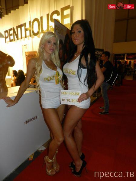 (18+) Берлинский фестиваль эротики - Venus 2013 (37 фото)