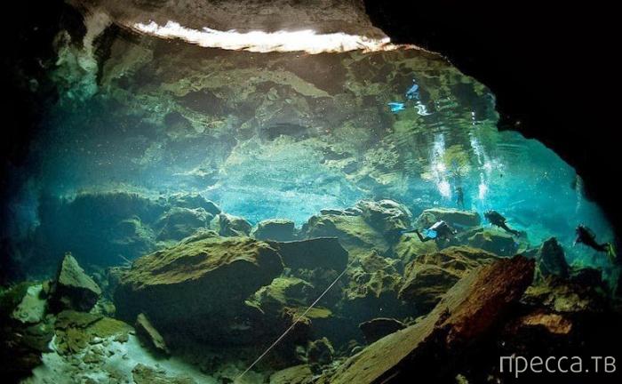 Сеноты полуострова Юкатан в Мексике (8 фото)