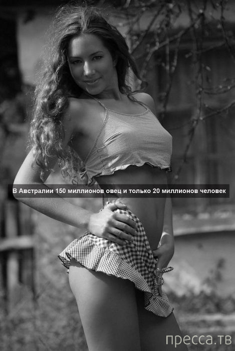Интересные и познавательные факты на фоне девушек (75 фото)
