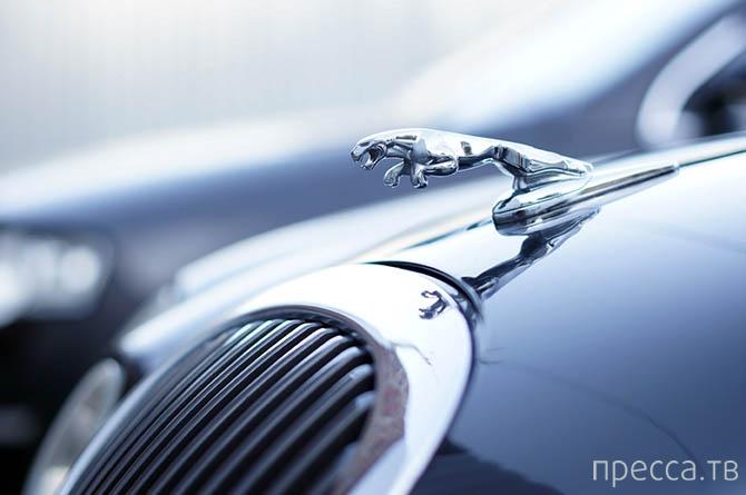 Секреты автомойки (20 фото)