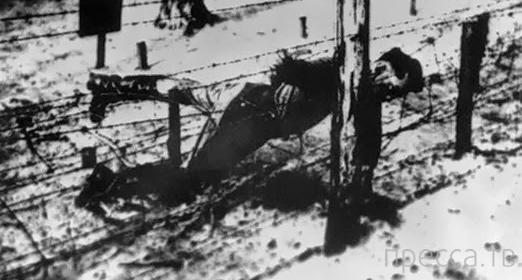 Три сына Иосифа Сталина (17 фото)