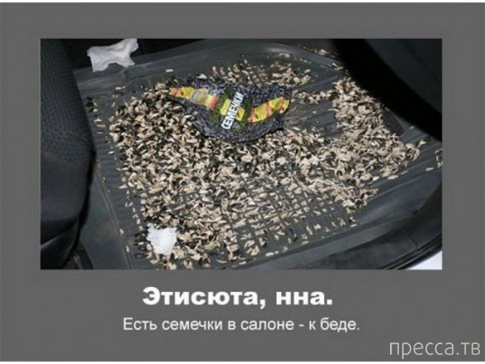 Автомобильные приметы (21 фото)