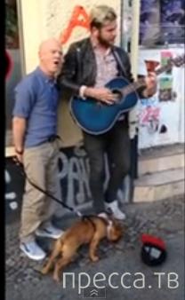 Совместная импровизация уличного музыканта и известного в 80-х годах вокалиста