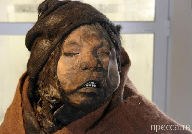 Топ 10: Самые знаменитые мумии и их загадочные истории (11 фото)