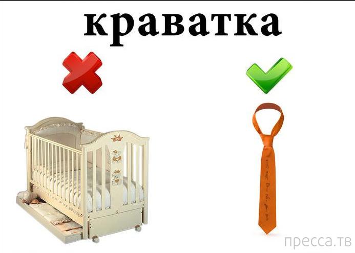 Изучаем украинский язык по картинкам! (5 фото)