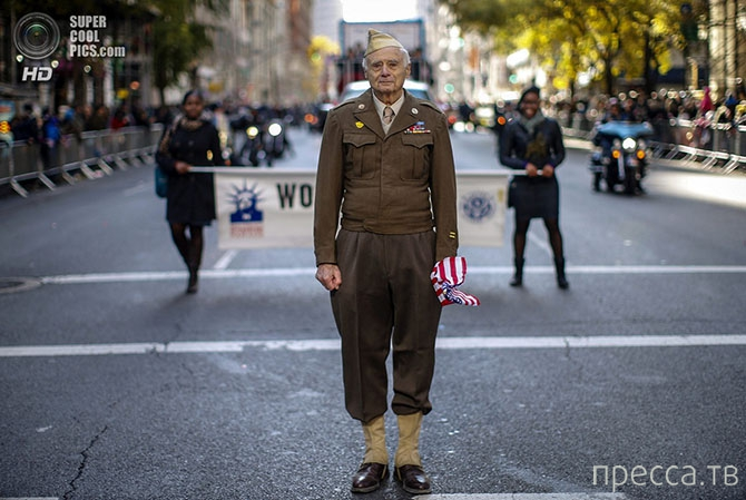 День Ветеранов Первой мировой... (13 фото)