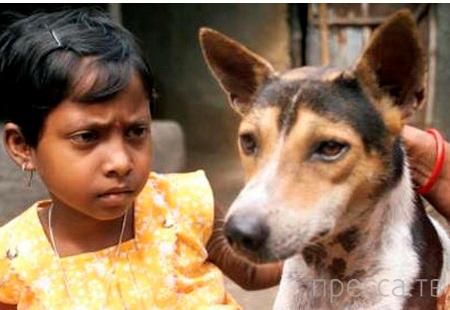 Топ 9: Самые странные истории о людях, заключивших браки с животными (9 фото)