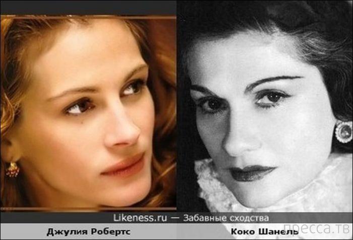 Забавное сходство знаменитостей (16 фото)