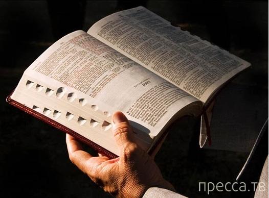 Топ 10: Главные библейские запреты (11 фото)