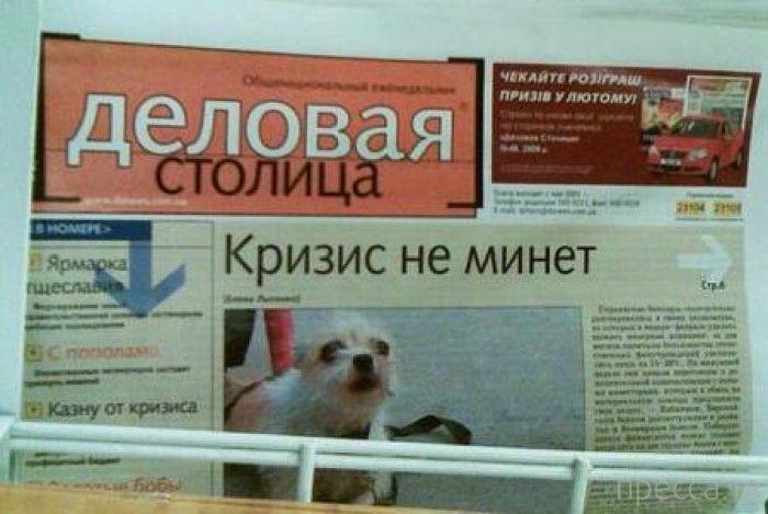 Народные маразмы - реклама и объявления, часть 143 (40 фото)