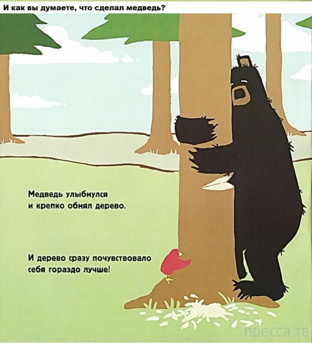 Медведь, который любил обнимать деревья (19 фото)