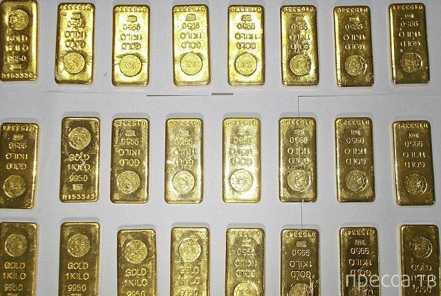 Миллион долларов золотом в туалете самолета (5 фото)