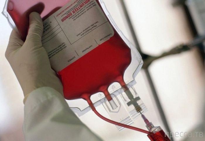 Интересные факты о крови человека (5 фото)