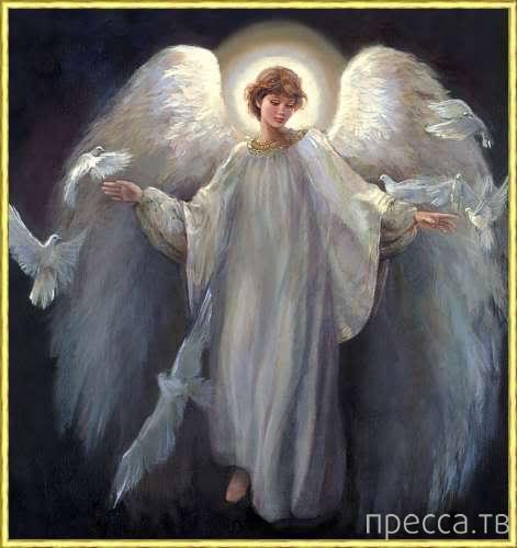 Ангел-хранитель...