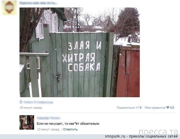 Прикольные комментарии из социальных сетей, часть 32 (21 фото)