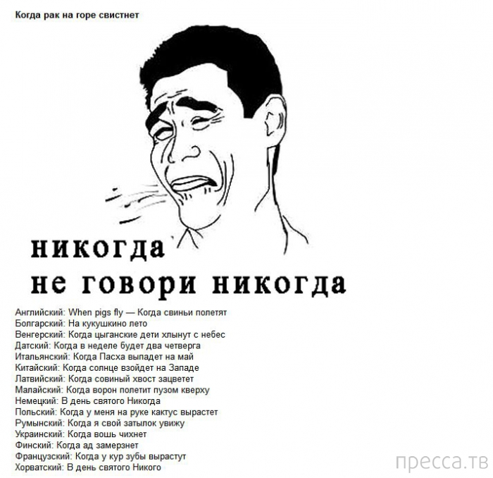 Крылатые фразы в переводе на разные языки мира (5 фото)