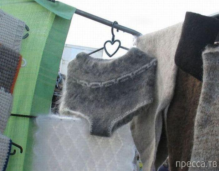 Жизнь без трусов: что если кружевные стринги запретят? (10 фото)