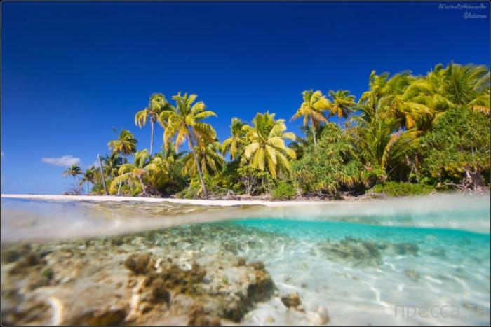 Французская Полинезия Атолл Тикехау - райский уголок в центре южной части Тихого океана (10 фото)
