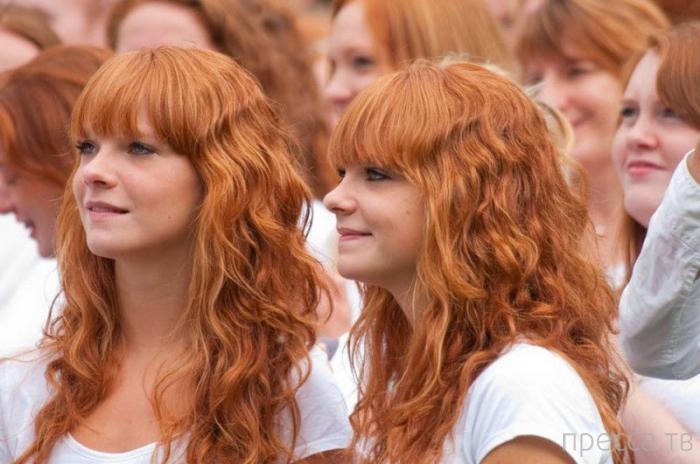 Ежегодный фестиваль рыжих в Голландии (8 фото)