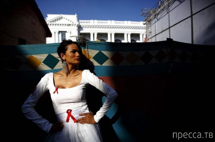 Международный день борьбы со СПИДом — 2013 (15 фото)