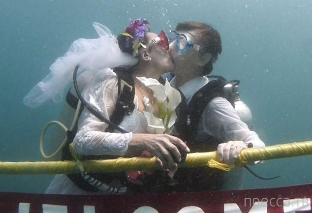 Парочка водолазов сыграла свадьбу на глубине 12 метров (13 фото)