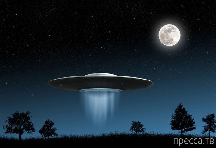 Топ 11: Интересные факты об НЛО (11 фото)