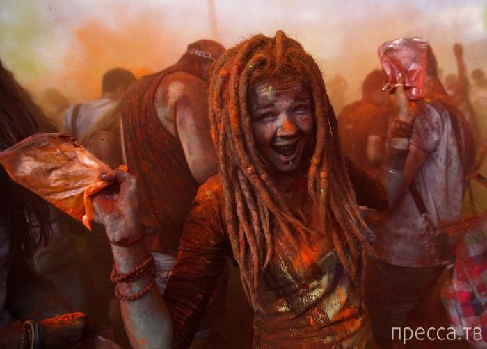 Лучшие фотографии конкурса Sony World Photo Awards 2014 (12 фото)