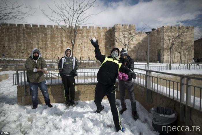 Ближний Восток засыпало снегом (13 фото)