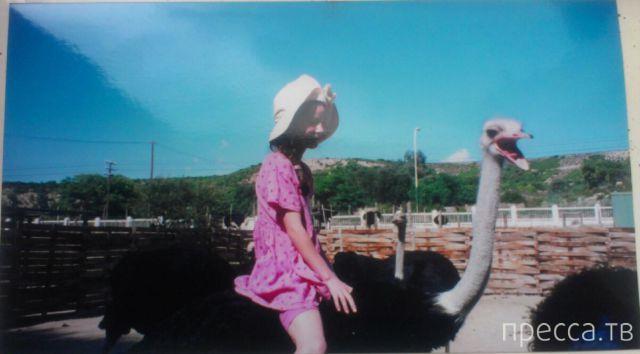 Подборка прикольных фотографий, часть 109 (100 фото)