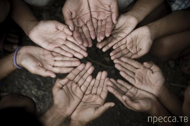 Топ 10: Способы помочь ближнему на Новый Год (10 фото)