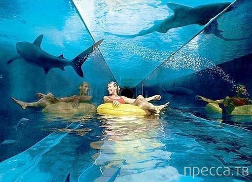Приколы. Когда я была администратором аквапарка...