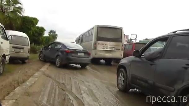 Особенности египетского дорожного движения...