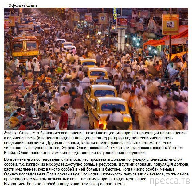 Топ 10: Методы влияния общества на человека (10 фото)