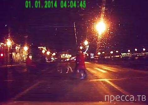 Олень переходит дорогу... Новый Год, г. Санкт-Петербург