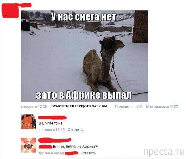 Прикольные комментарии из социальных сетей, часть 47 (34 фото)