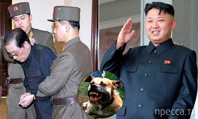 Жуткие новости из Северной Кореи. Подробности казни дяди Ким Чен Ына (2 фото)