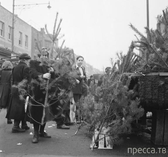 Винтажные рождественские фотографии от британского фотографа Генри Гранта (20 фото)