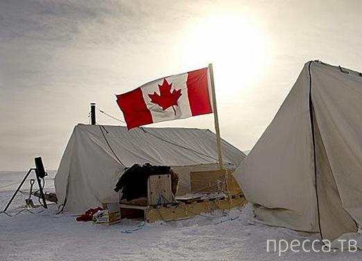 Топ 5: Самые распространенные мифы о Северном полюсе (6 фото)