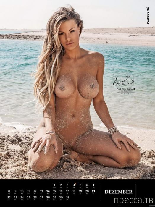 (18+) Календарь от немецкого Playboy на 2014 год (14 фото)