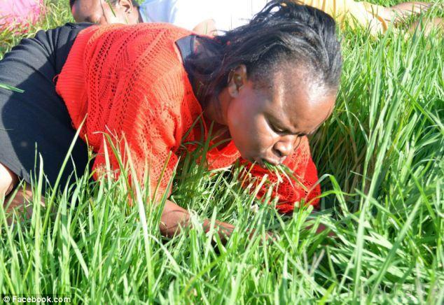 Южноафриканский проповедник призвал паству съесть церковный газон (8 фото)