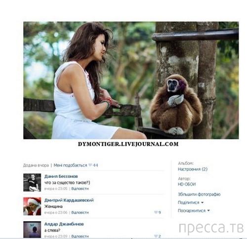 Прикольные комментарии из социальных сетей, часть 52 (28 фото)