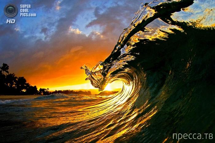 Красивые фотографии от сёрфингиста Кларк Литл (11 фото)